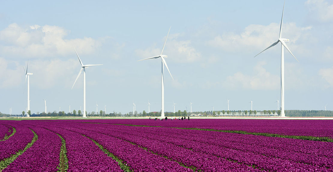 Repower 3.4M im Windpark Zuidlob in Flevoland , NL